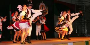 umelec-2013-FS_Makovica-perex-944x472px-web-304x152